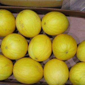 Melon Yellow delivery Greenock