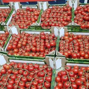 cherry tomato veg delivery Greenock