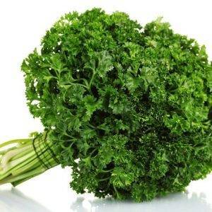 curly-parsley-herb-delivery-Greenock